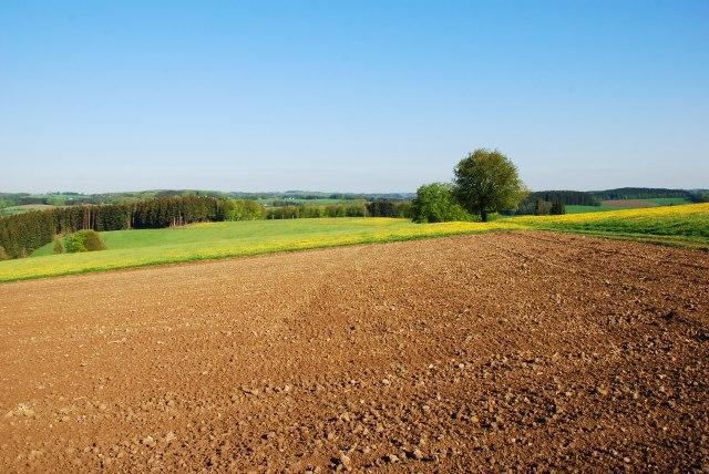 Stranci kupuju zemlju u Srbiji