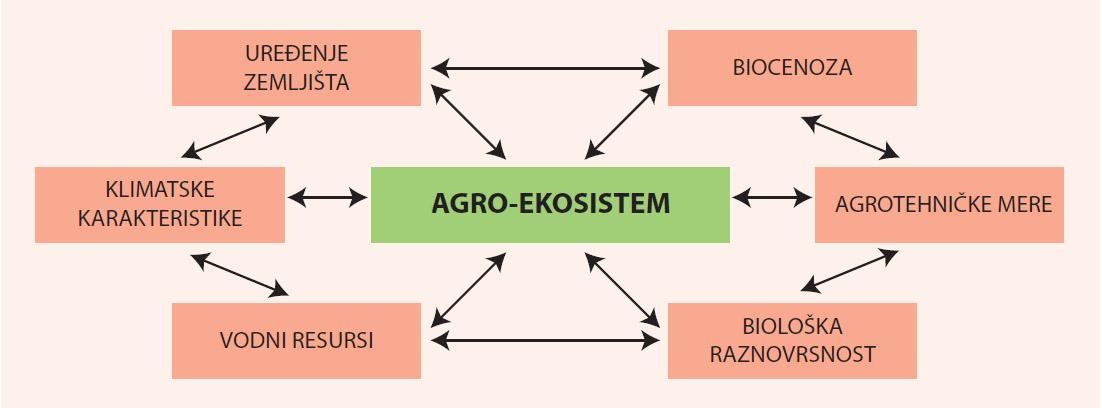 Agro-ekosistem