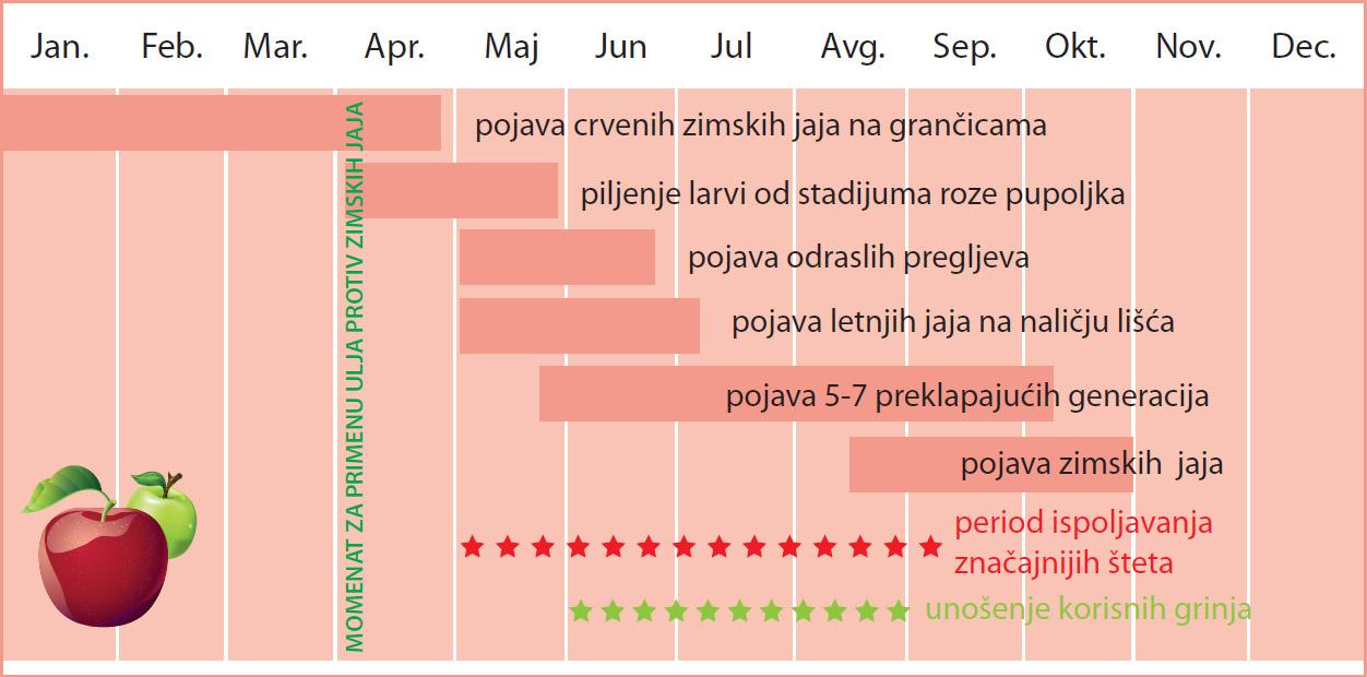 Životni ciklus crvenog preglja i mere zaštite