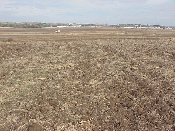 Prosušeno polje