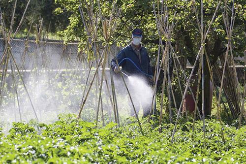 eko-pesticidi